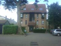 Studio flat in Wycherley Close, Blackheath, London, SE3(Ref: 3465)