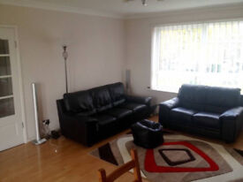 Double Room in a Large Two Bed Flat for Rent