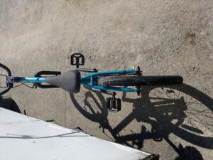 Norco BMX bike