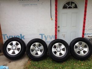 Toyota Tacoma Trd factory alloy rims and winter tires
