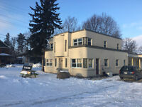 Orillia - Newly Renovated 1 Bed Apt Walking Distance to Beach!