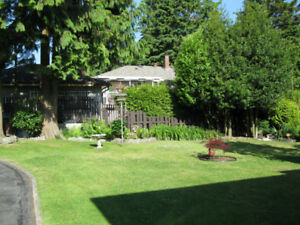 Lovely house for rent Surrey, BC