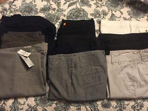Size 12 Dress Pants