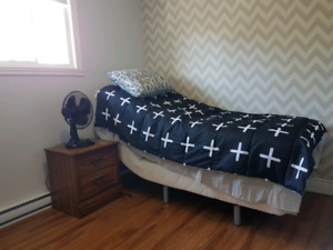 Newly renovated Room for rent