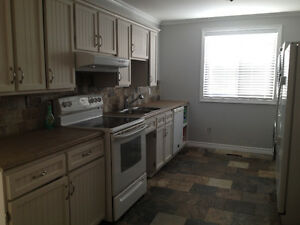 Beautiful main floor 3 bedroom for rent