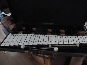 Xylophone and case