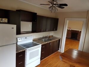 Large 1 Bedroom recently renovated 2nd Floor Apartment