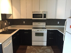 Amazing 3 Bedroom / 2 Bathroom Apartment, Close to Downtown