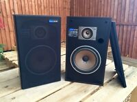 Two PIONEER speakers CS 363