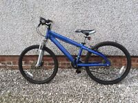 Junior's Bike - Barracuda