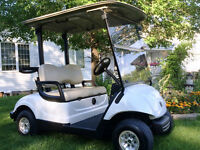 ~The Golf Cart Guy~2011 YAMAHA ELECTRIC GOLF CARTS-NEW BATTERIES