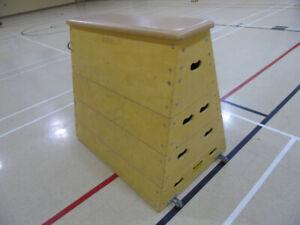 Gymnastics Equipment: ropes, rings, balance beam