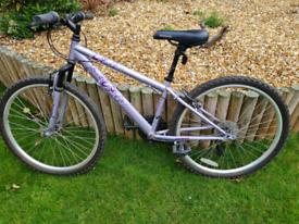 FREE girl's bike