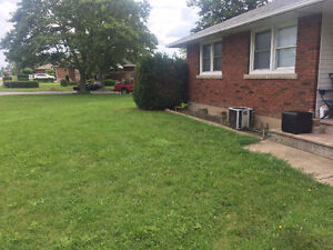 looking for roomate to split 3 bedroom house