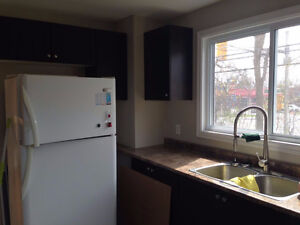 Newly Renovated 3 Bedroom detached House on *St. Laurent Blvd*
