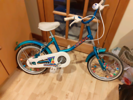 Raleigh Cherokee Bike