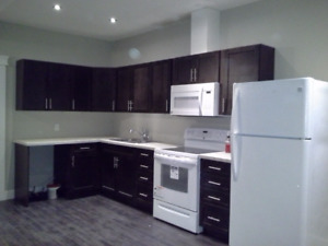2 bedrooms legal basement with separate entry @ Parsons creek