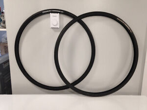 Giant P-R3 700x25 Road Bike Tires with Flat Guard