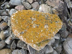 decorative flat rock