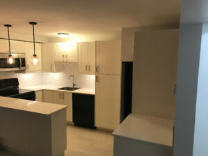 BRAND NEW suite in Coquitlam, near Skytrain/Douglas College