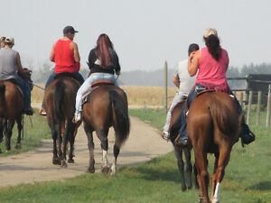 Trail rides, wagon rides, birthday parties, and much much more Moose Jaw Regina Area image 9