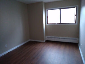 WANTED- female roommate for downtown apartment!