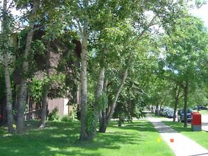 3-Bedroom + 3.5 bath condo with spacious storage in St. Albert