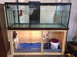 Installation and Service of Saltwater Marine Fish Reef Aquariumh