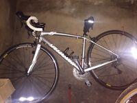 Specialized Dolce Road bike 51cm frame