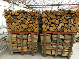 Firewood Seasoned