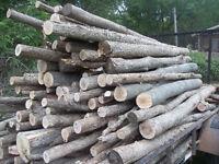 Firewood *NEW PRICE!