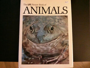 1969 The Life Picture Book of Animals (Time-Life) Hardcover $5