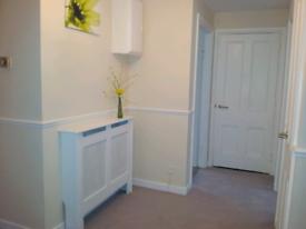 Cosy and bright single room
