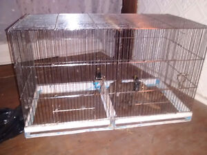 Large metal flight cage (finches avail. + extra)