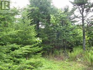 land 771 West Porters Lake Road for sale