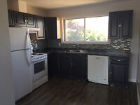 UPSTAIRS SUITE FOR RENT - WITH RAINFALL SHOWER & NEW KITCHEN!