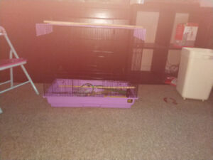 Large bird cage with 30$ small bird cage 15$