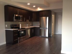 One bedroom condo with den in U of M area for rent