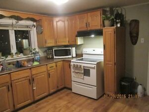 2 or 3 bdr house for rent. BayBulls Ocean View Available Now St. John's Newfoundland image 3