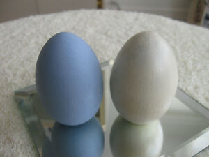 TWO SOLID WOODEN EGGS