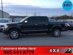 2010 Ford F-150 Platinum  NAV ROOF CAM PWR-BOARDS CS/HS P/SEATS