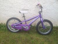 Kids Specialized Hotrock 16 Bike