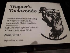 Two months (April and May) membership at Wagner's Taekwondo $50