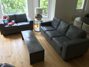 IKEA Leather Couch (Read Bio)