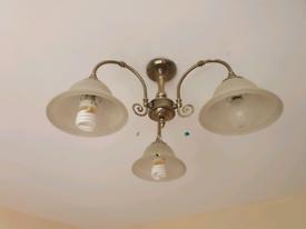 3 bulb ceiling light.