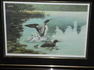 LIMITED EDITION LOON PRINT- REDUCED PRICE London Ontario image 1