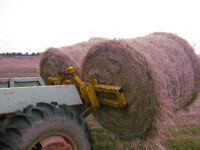 Double round bale or large square bale fork