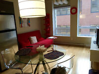 Modern 1 bedroom apt in downtown! Furnished, all inclusive!