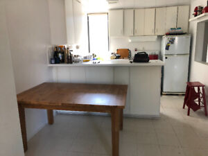 Ikea Solid Wood Extendable STORNAS Table