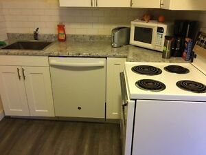 Fully Renovated Two Bedroom Downtown Suite